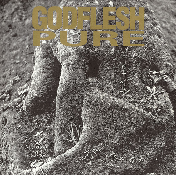 pure-godflesh